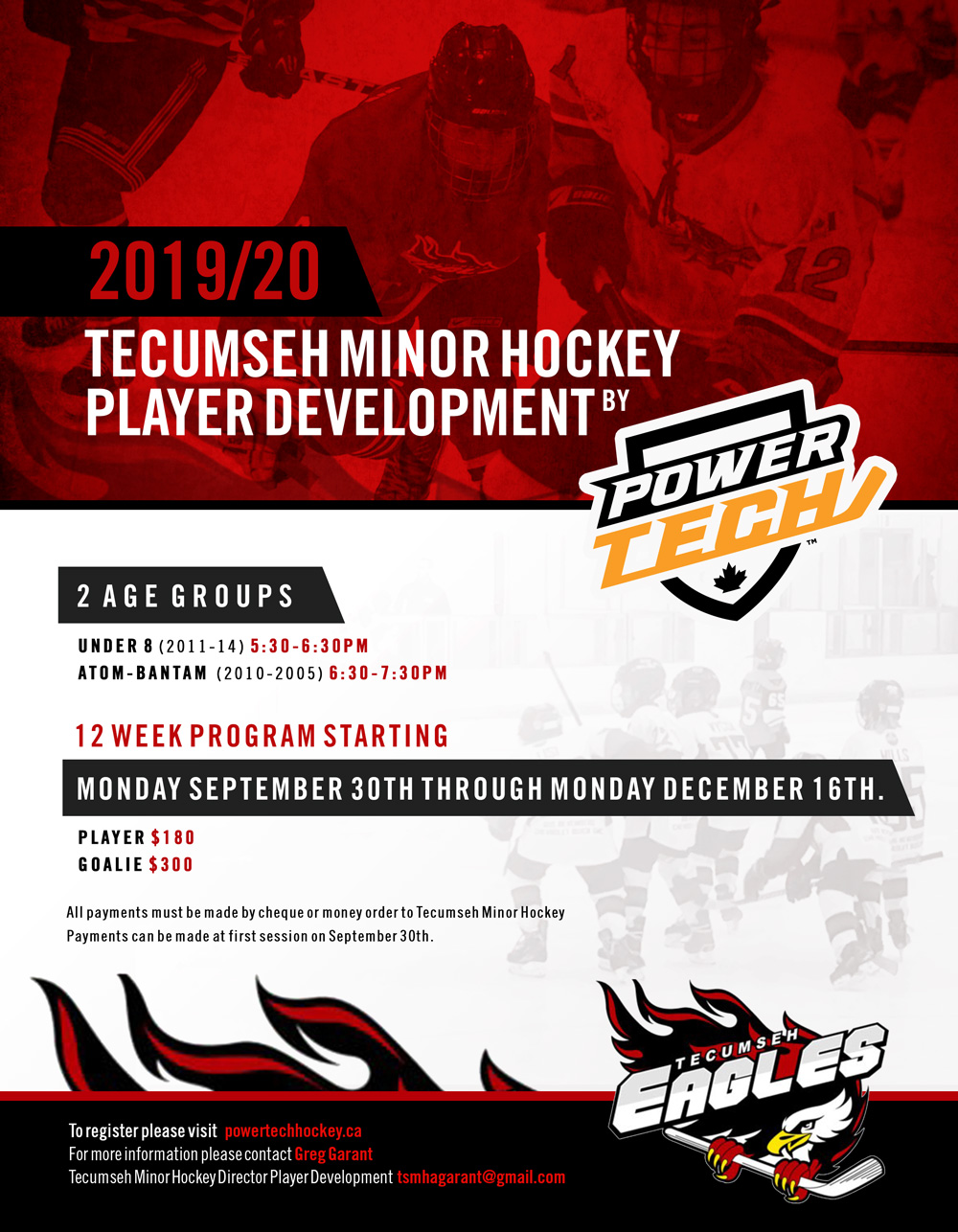 Tecumseh-Minor-Hockey-Player-Development.jpg
